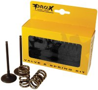 Steel Intake Valve and Springs KIT KTM250 SX-F